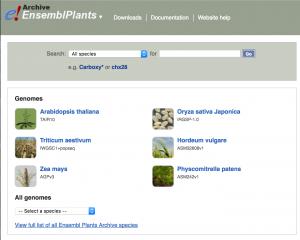 plant archive